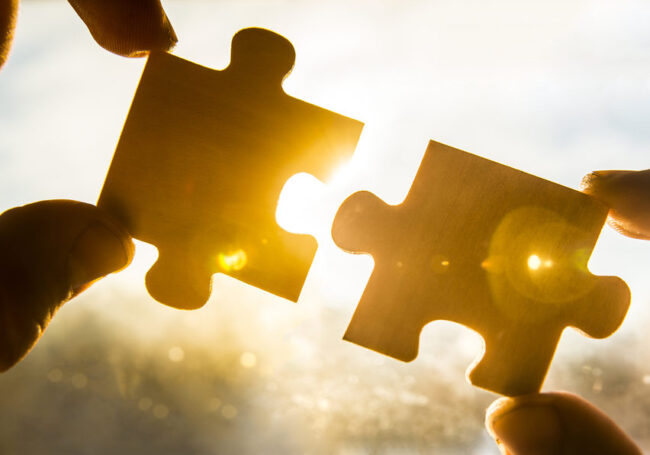 Case management puzzle pieces